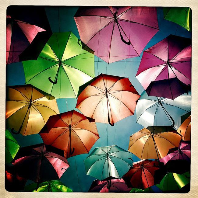 umbrella-color-portugal-Patricia-Almeida-4