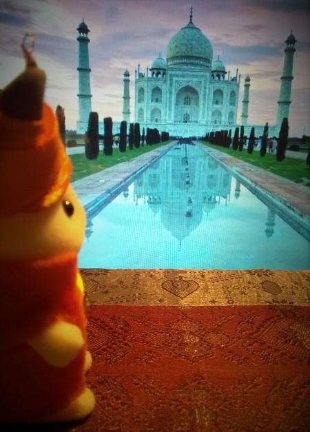 La famille zoreille Taj Mahal 10