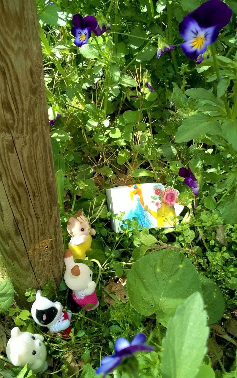 chasse au trésor dans la prairie fleurie 5