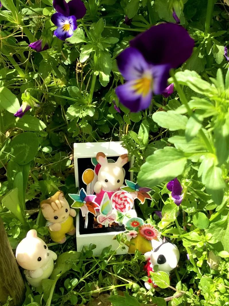 chasse au trésor dans la prairie fleurie 6