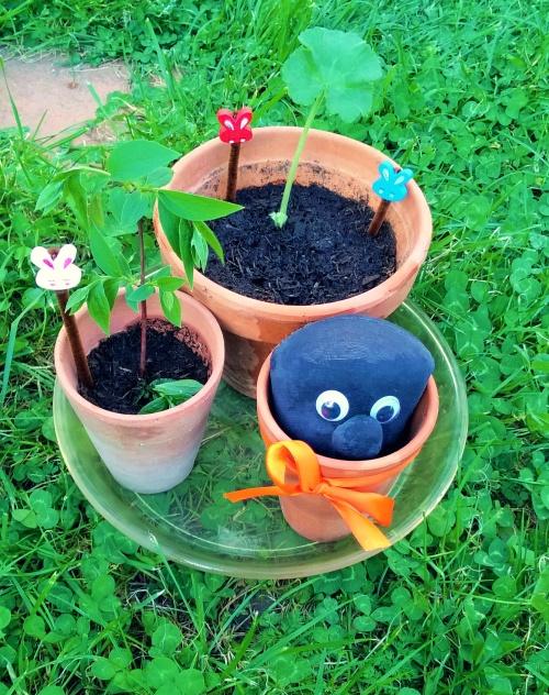 Mon mini jardin