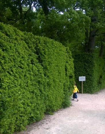 labyrinthe de Merville 1