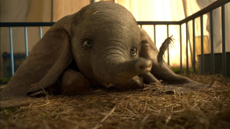Dumbo Tim Burton (5)