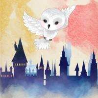 Calendrier de l'Avent Harry Potter - 1 clic par jour, 1 surprise par jour!